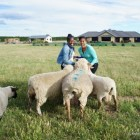 At Home on a New Zealand Sheep Farm